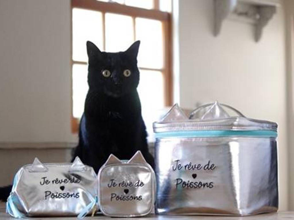 収納力×実用性バツグンのネコ型の化粧ポーチが可愛い♪