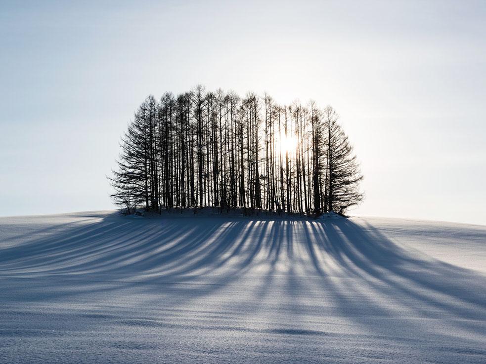 寂しいときの対処法!孤独感や悲しみを乗り越えるために大切な心構えとは!?