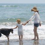 子ども・家族に振り回されがちな夏休みママ。低ストレスで過ごす鍵は?子育てママの行動を調査