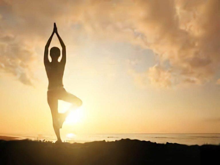 体力や体質の不足を補う「補」という考え方