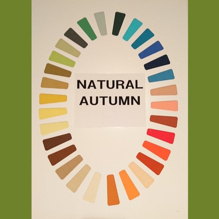 「オータム」はイエローベースの深みのある抑えた色のグループです