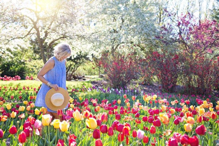 春の花壇や若葉のような明るい色