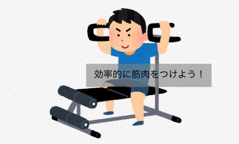 効率的に筋肉をつけよう!